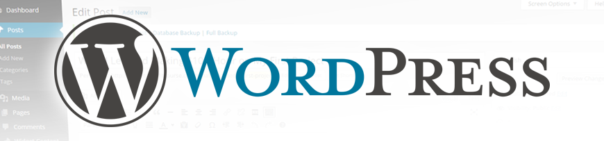 WordPress Logo Banner