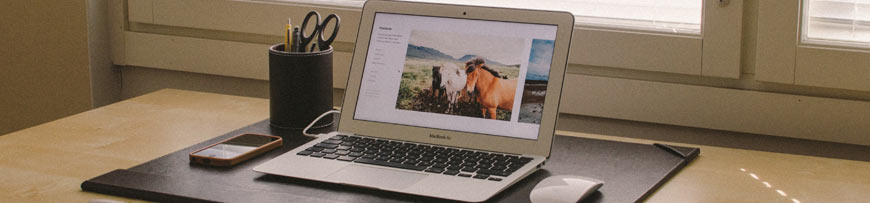 Website Photo Content on a Laptop