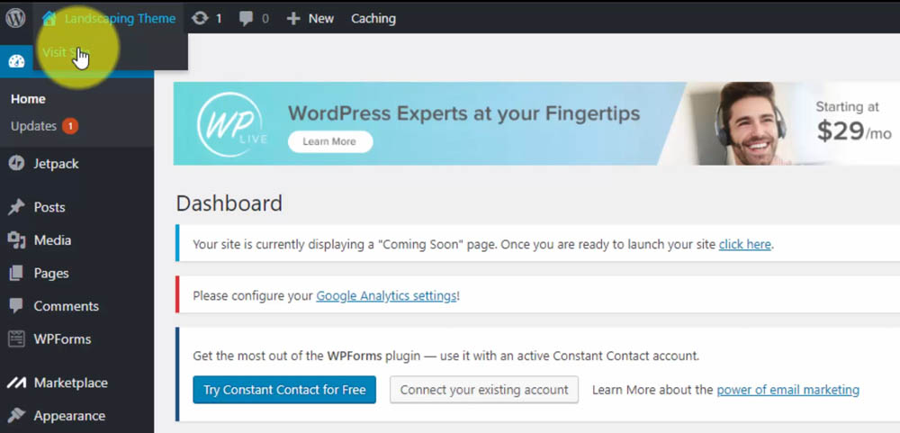 Visit Your WordPress Website